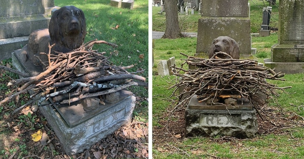 People Are Leaving Sticks at a Cemetery To Pay Tribute To a Dog Who Died 100 Years Ago