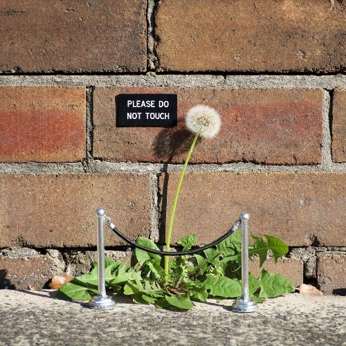 Clever Street Artist Transforms Ordinary Public Places Into Funny Installations