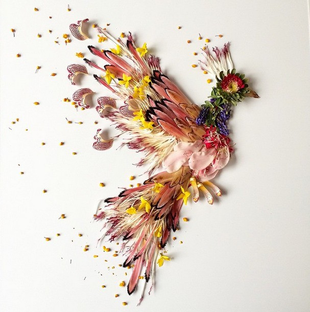 Seattle Artist Creates Beautiful Collages with Flowers and Plants