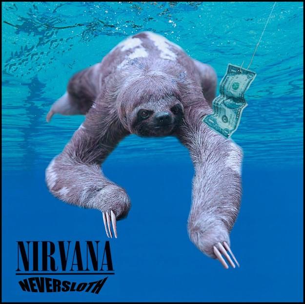 Hilarious Mashup Reimagines Sloths on Famous Album Covers