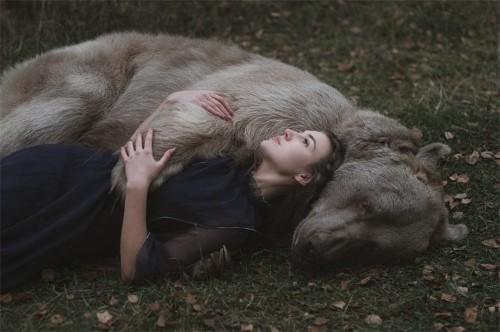 Photographer Creates Enchanting Fairytale Photos with Real Wild Animals