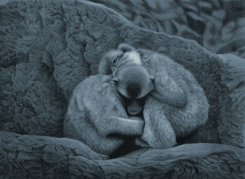 Photorealistic Color Pencil Drawing of Two Monkeys Hugging