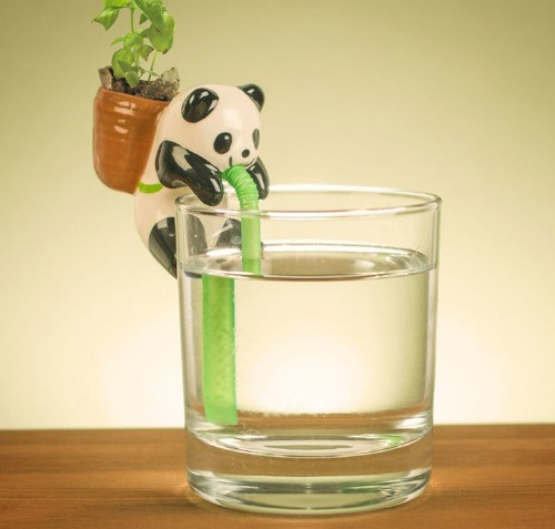 Adorable Ceramic Animals Sip Water Through Straws When Plants on Their Back Get Thirsty