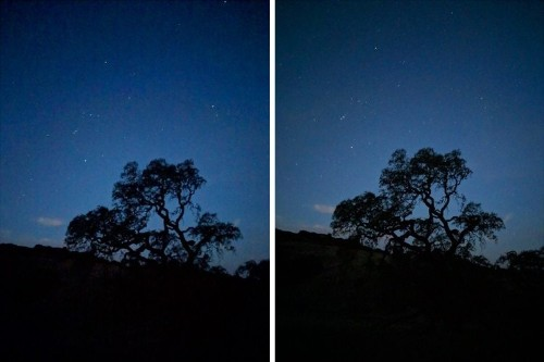 Google's New Night Sight Lets You Take Photos in Virtual Darkness