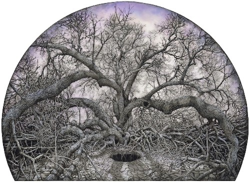 Incredibly Detailed Illustrations of Giant Trees With Unruly Roots