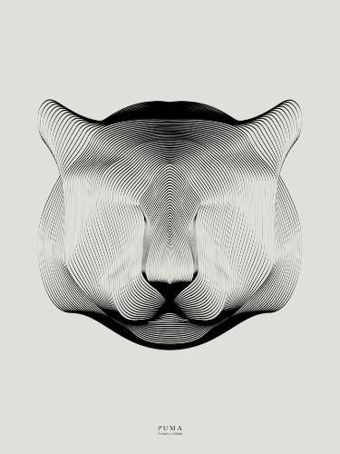 My Modern Shop Spotlight – Andrea Minini's Playful Animal Illustrations