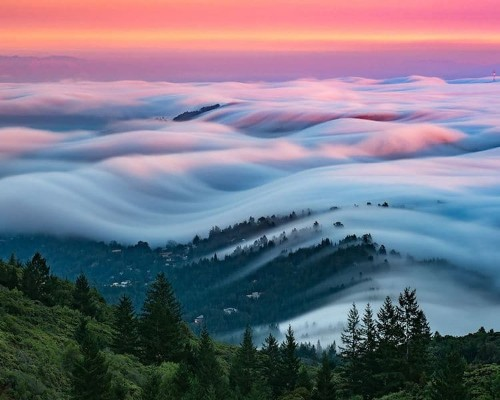 Dreamy Photos Capture the Natural Beauty of Rolling Fog Waves