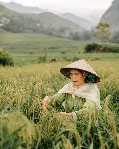 Remarkable Photos of One Man's Journey Across Northern Vietnam