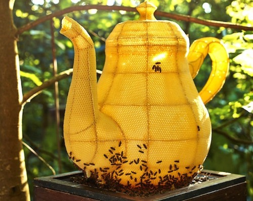 Artist Partners with 60,000 Bees to Form Splendid Teapot Sculpture