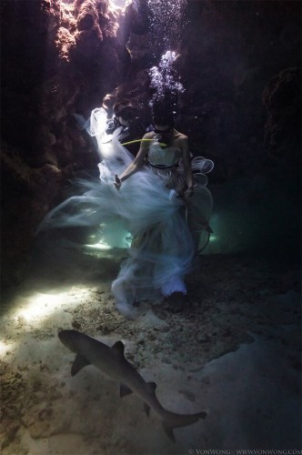 Ethereal Underwater Portraits Captured While Free Diving with Live Sharks