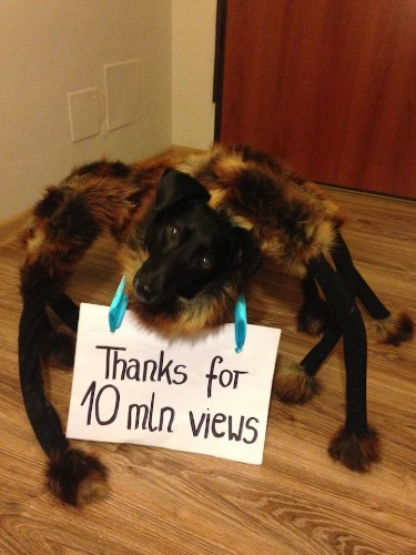 Dog Dressed Up as Giant Mutant Spider Makes Unsuspecting Victims Flee in Terror