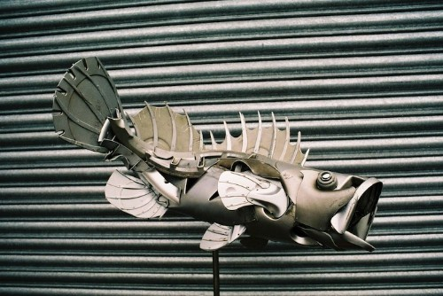Abandoned Hubcaps Transform into Amazing Animal Sculptures