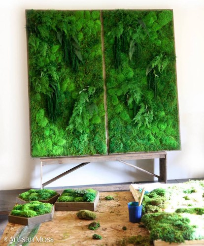 Eco-Friendly Botanical Wall Art Brings the Self-Sustaining Beauty of Nature Indoors