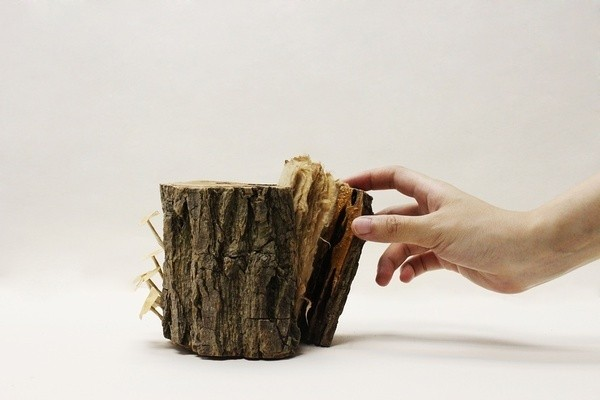 Handmade Book Covertly Hidden Inside a Wooden Tree Trunk