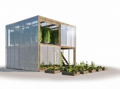 Urban Farming Revolution: Impact Farm Allows You to Grow Fresh Produce in the Middle of the City
