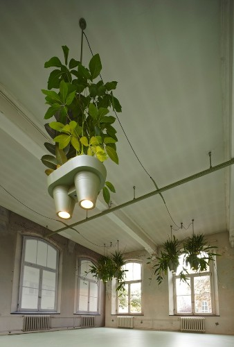 Inventive Space-Saving Light Design Also Holds Potted Plants