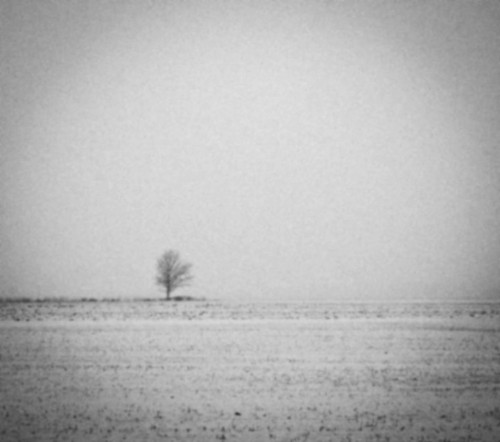 Evocative Black and White Landscapes by Derek Toye