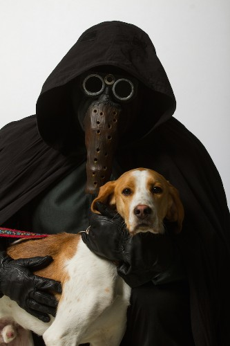 Star Wars Cosplayers Pose with Adorable Shelter Animals to Promote Adoption