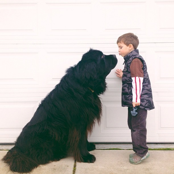 Interview with the Mother of the Little Boy and His Huge Dog