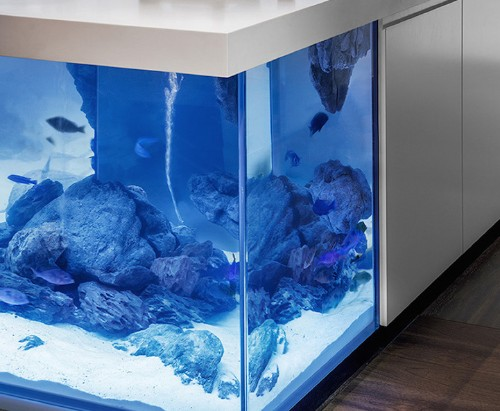 Modern Kitchen Island Gorgeously Combined With Fully-Functional Aquarium