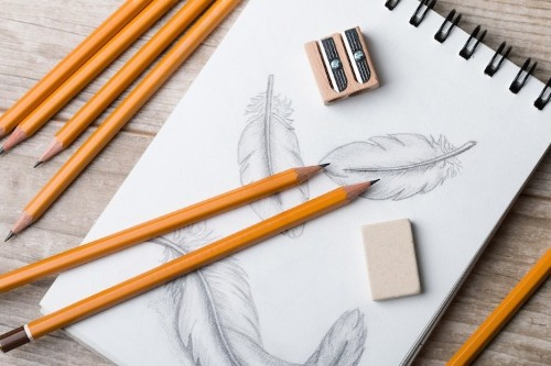 Learn How to Draw Feathers with This Step-By-Step Guide