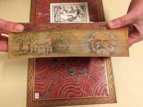 200-Year-Old Historic Books Reveal Hidden Fore-Edge Paintings