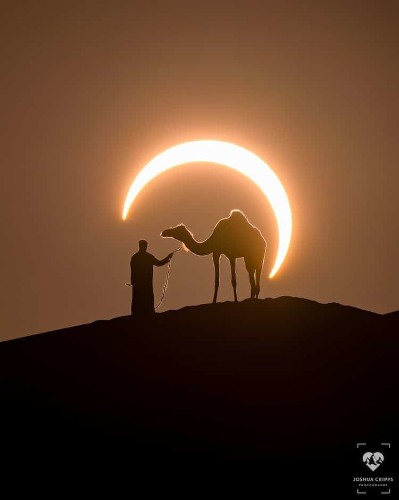 Solar Eclipse Photo Perfectly Frames Man Leading Camel in the Desert