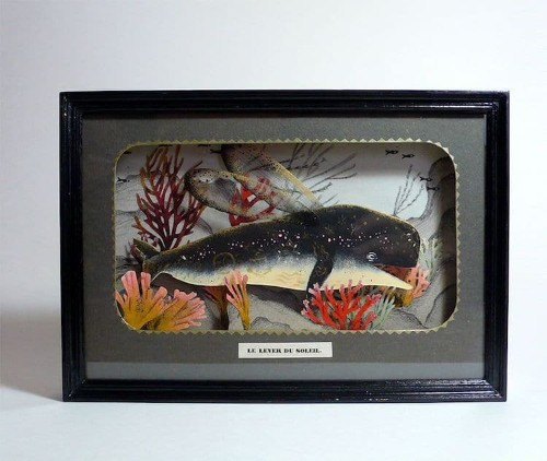 Playful Dioramas Offer a Peek Into the Colorful Personalities Under the Sea