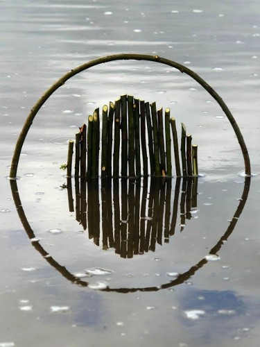 Spectacular Geometric Forms Find Balance in Nature