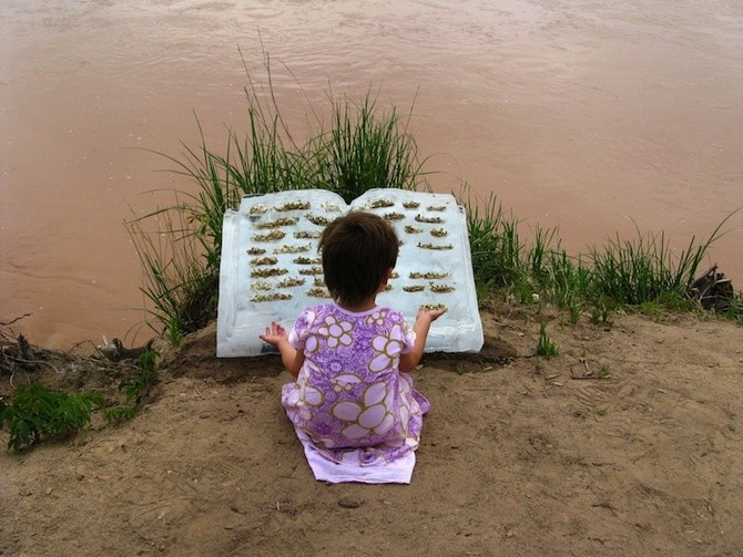 Ice Books Embedded with Seeds are Released into Rivers