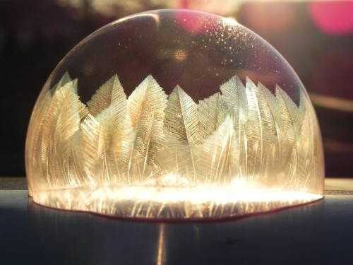 Incredible Frozen Bubbles Sprout Beautiful Feather Crystals