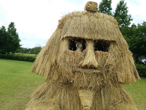 Towering Sculptures of Monsters Made of Straw