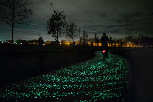 Glow-in-the-Dark Bike Path Inspired by Van Gogh's The Starry Night