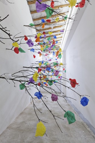 Surreal Forest of Trees Sprouts From a Wall