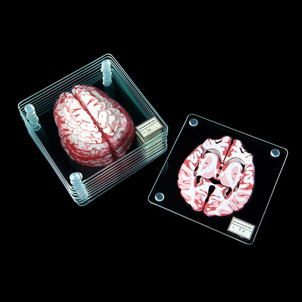 Stackable Glass Coasters Separate the Brain Into 3D Specimen