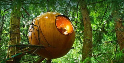 Canada's Giant Spherical Treehouse Hotels Let You Sleep in the Trees