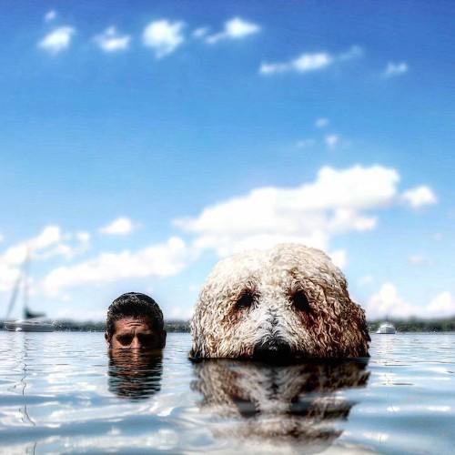 "Imaginative Photographer Takes His ""Gigantic"" Dog on Extraordinary Adventures"