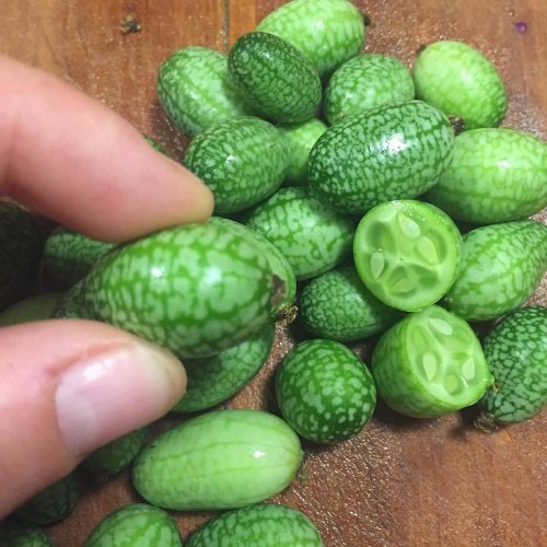 """""""Cucamelons"""" Are a Bite-Size Combination of Cucumbers and Melons"""