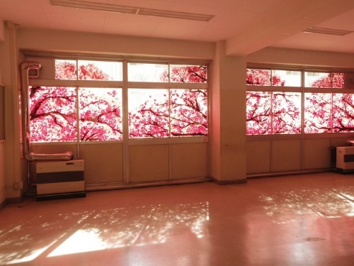 Spectacular Cherry Blossom Murals Made with Hand Prints