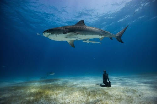 10 Stunning Entries in the 2014 Nat Geo Traveler Photo Contest