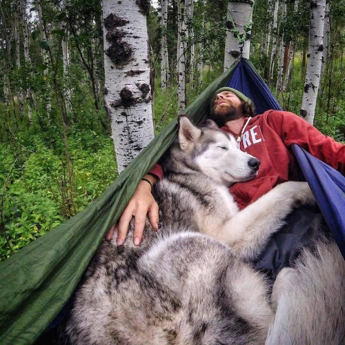Man Documents His Incredible Outdoor Adventures with His Gorgeous Wolfdog
