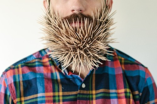 Hilarious Photos of a Man with Random Objects in His Beard
