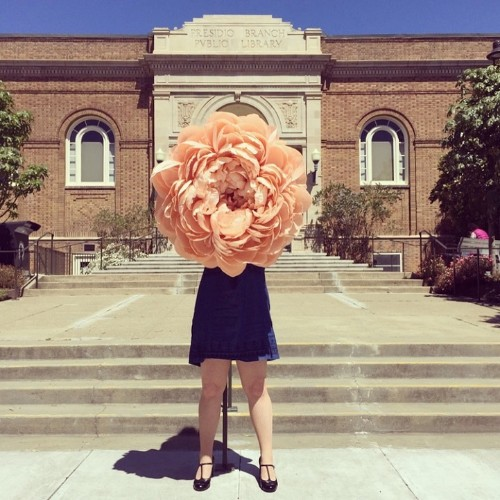 Artist Crafts Incredibly Realistic Gigantic Flowers Out of Paper