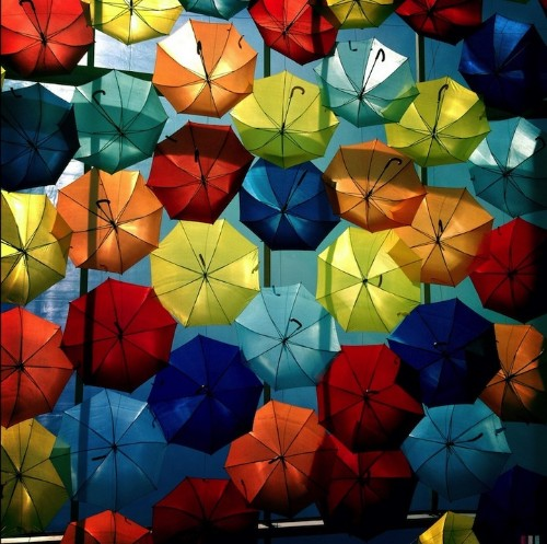 New Colorful Canopies of Umbrellas in Portugal