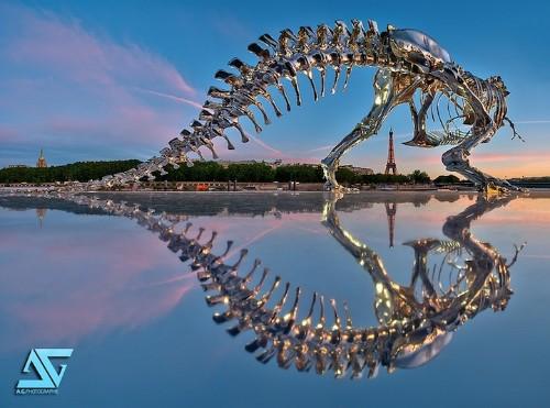 Life-Size T-Rex Skeleton Pops Up in Paris