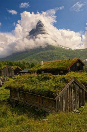 Scandinavia Has Green-Roofed Homes That Are Like Real-Life Hobbit Houses