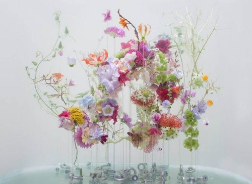 Ethereal Beauty of Flowers Floating Like Ballerinas Under Water