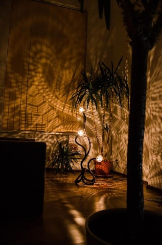 Artist Drills Coconuts into Lamps That Shine Gorgeous Patterns of Lights