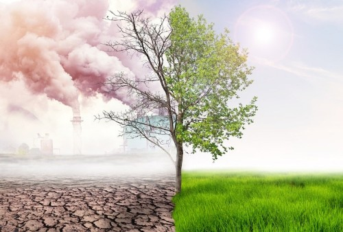 Italy Becomes First Country to Make Climate Change Education Mandatory