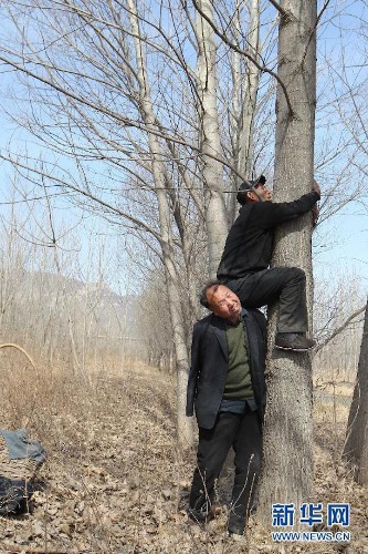 Elderly Blind Man and His Armless Friend Plant Over 10,000 Trees in China